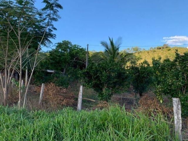 Vendo Fazenda 12 Alqueires, 55 Km de Palmas - Foto 5