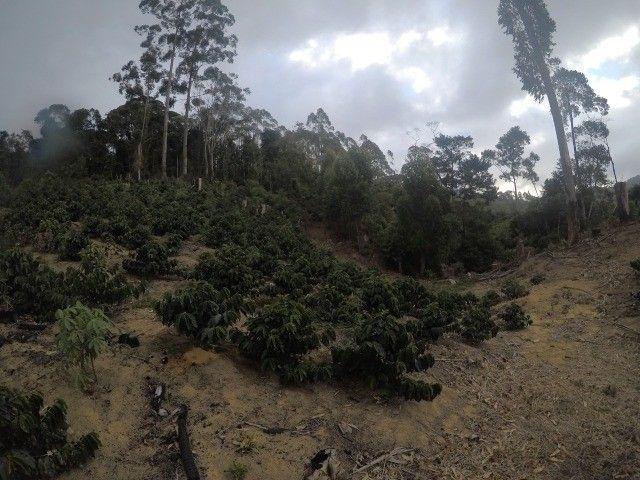 DM- Sítio grande e produtivo em Santa Teresa 25 Hectares - Foto 12