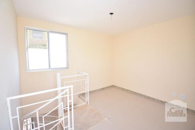 Apartamento à venda com 3 dormitórios em Alto caiçaras, Belo horizonte cod:247835 - Foto 3