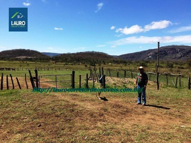 Linda fazenda com 620 Hect. em Pedra Azul-MG - Foto 6