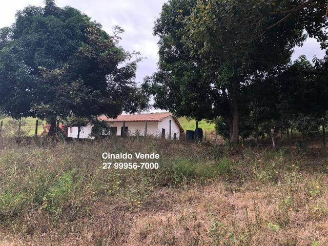 Fazenda com 35 alqueires (169,40 hectares) em São Mateus ES - Foto 20
