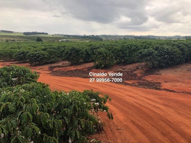 Fazenda com 35 alqueires (169,40 hectares) em São Mateus ES - Foto 7