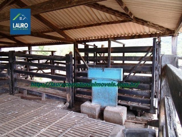 Linda fazenda com 620 Hect. em Pedra Azul-MG - Foto 11