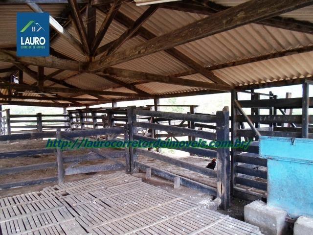 Linda fazenda com 620 Hect. em Pedra Azul-MG - Foto 13