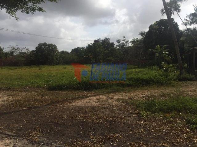 Terreno à venda com 0 dormitórios em Chácara itapiracó, São luís cod:617