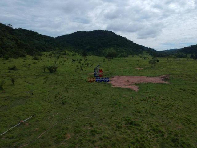 Fazenda à venda, por R$ 19.950.000 - Alta Floresta D'Oeste/RO - Foto 5