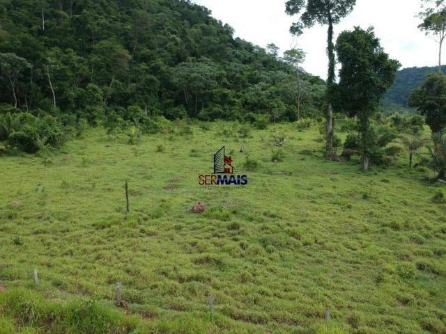 Fazenda à venda, por R$ 19.950.000 - Alta Floresta D'Oeste/RO - Foto 7