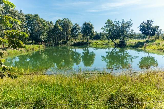 Chácara 8,32 hectares - Foto 3