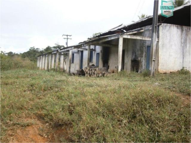 Fazenda na cidade de Ibirataia a 340 Km de Salvador e 320 Km de Camaçari - Foto 14