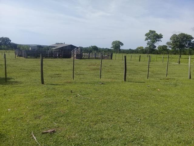 Fazenda toda formada a 99 km de Várzea Grande sentido Cáceres - Foto 4