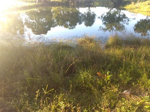 Chácara 8,32 hectares - Foto 6