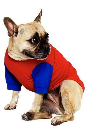 Camiseta para Pet