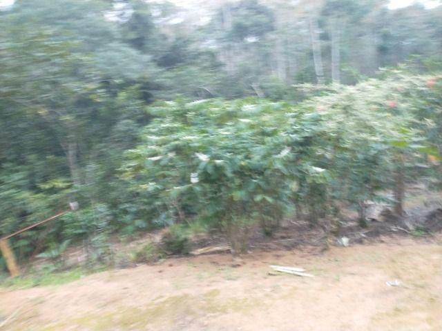 Chácara Viana 5 mil metros quadrados - Foto 6