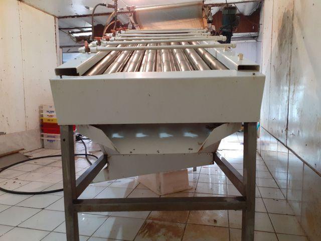Máquina de descascar camarão - Foto 4