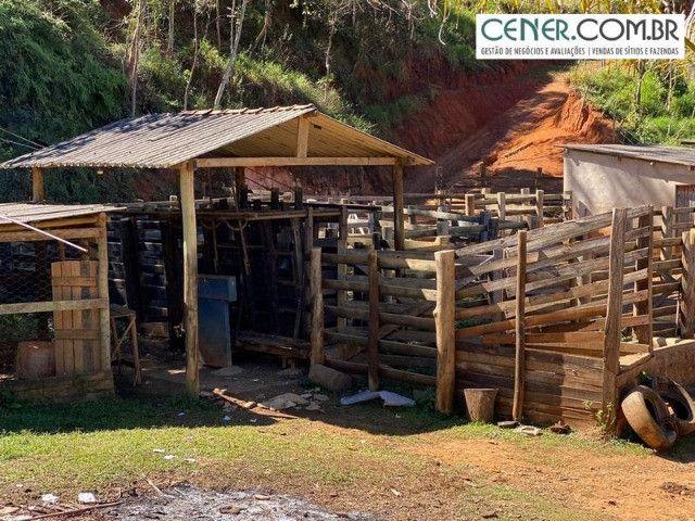 1878/Fazenda de alta qualidade com 66 ha em ótima localização - Foto 19