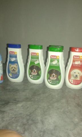 Shampoo e condicionador para cães