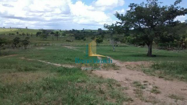 Fazenda á 90 Km de Eunápolis - Foto 4