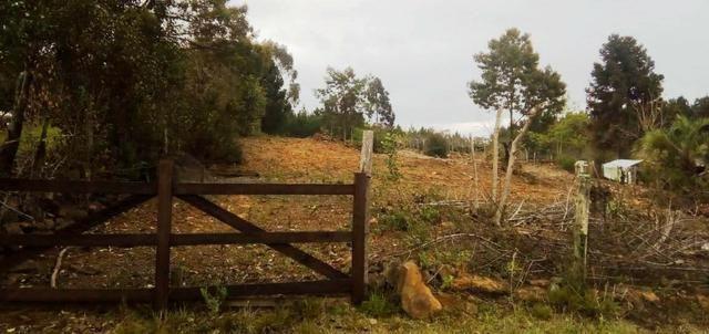 Sítio na Vila Rural (Queimadas) em Inácio Martins - Área: 5,044.09 m² - Foto 20