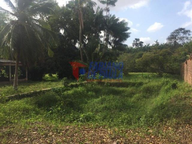 Terreno à venda com 0 dormitórios em Chácara itapiracó, São luís cod:617 - Foto 3