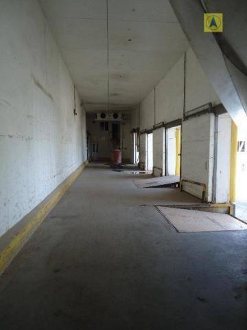 Indústria para locação - Área - Galpão - Foto 6