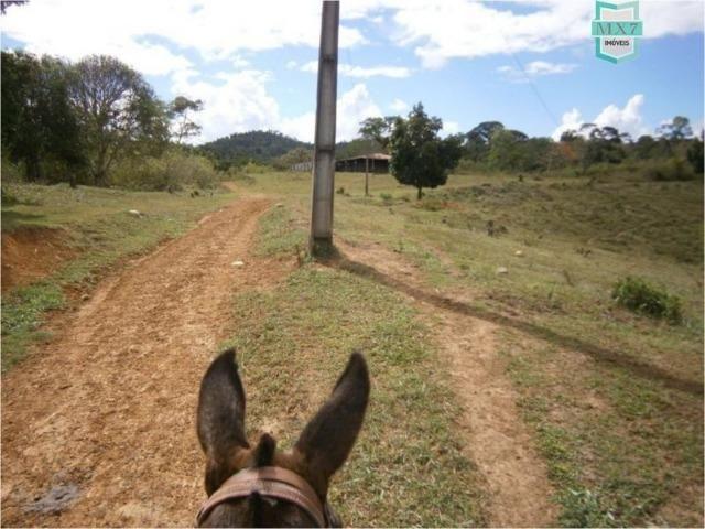 Fazenda na cidade de Ibirataia a 340 Km de Salvador e 320 Km de Camaçari - Foto 8