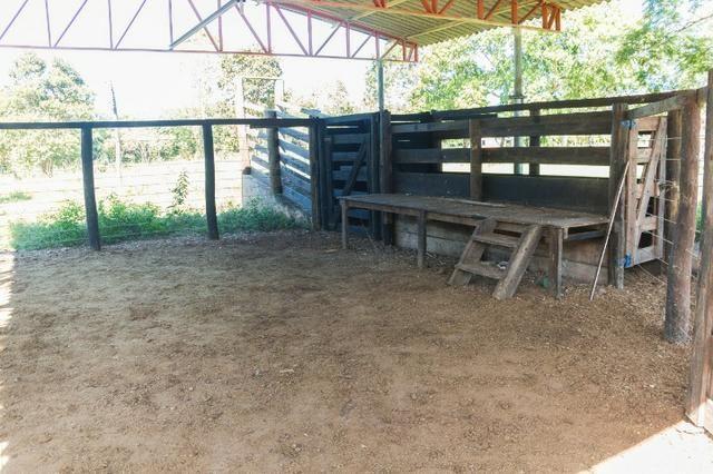 Chácara 8,32 hectares - Foto 12