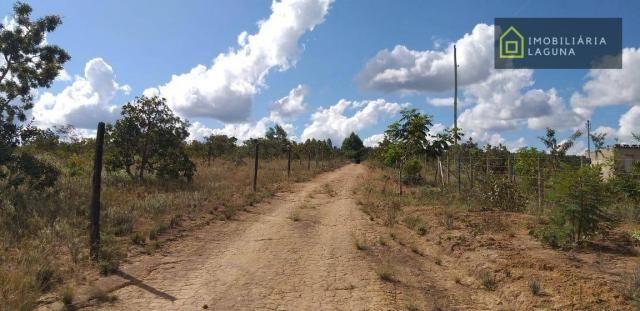 CHÁCARA NA REGIÃO DE CURVELO ENTRADA DE 10 MIL E PRESTAÇÕES DE 500,00 FIXAS - Foto 3