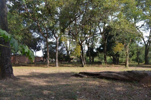 Chácara á venda (4 lotes): 9.729,72 m². Cidade Vera Cruz, Aparecida de Goiânia-GO - Foto 15