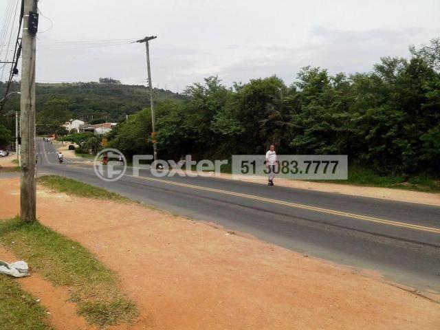 Terreno à venda em Mário quintana, Porto alegre cod:118854 - Foto 3