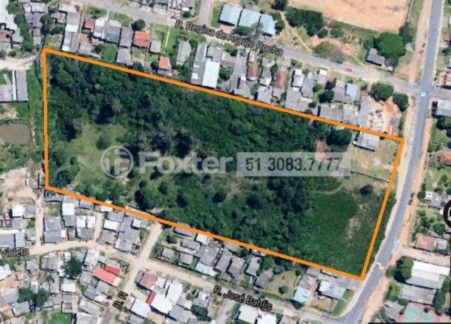 Terreno à venda em Mário quintana, Porto alegre cod:118854 - Foto 4
