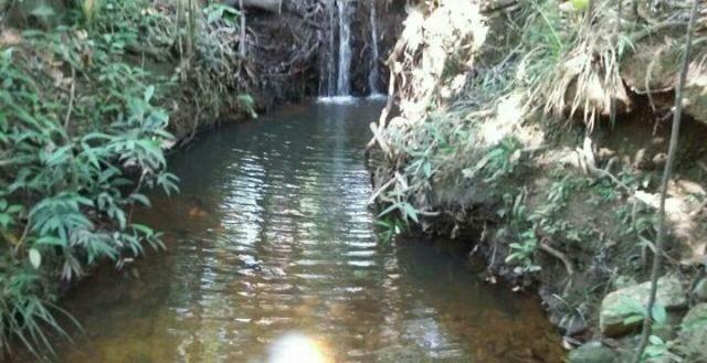Vendo terra na região de falapao