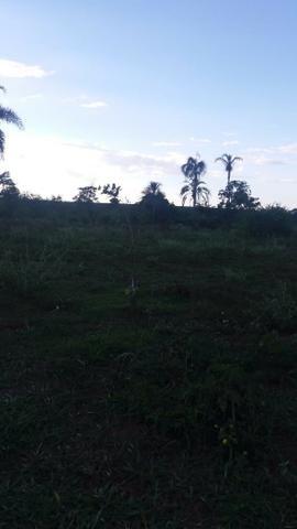 Fazenda de 114 alqueires - Aparecida do Taboado-MS-F090219 - Foto 2
