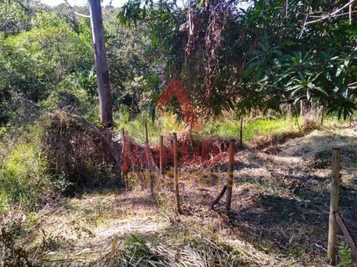 Terreno à venda em Samambaia |, Juatuba cod:TE00042 - Foto 6