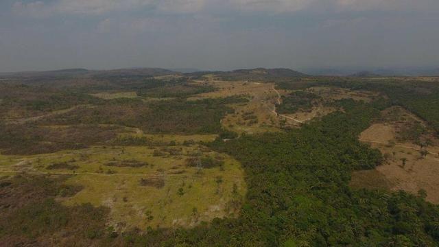 Fazenda região de São Vicente - Foto 3