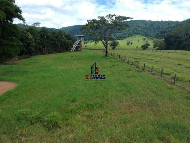 Fazenda à venda, por R$ 11.594.000 - Alta Floresta D'Oeste/RO - Foto 19