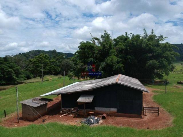 Fazenda à venda, por R$ 11.594.000 - Alta Floresta D'Oeste/RO - Foto 20