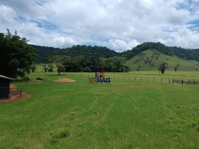 Fazenda à venda, por R$ 11.594.000 - Alta Floresta D'Oeste/RO - Foto 16