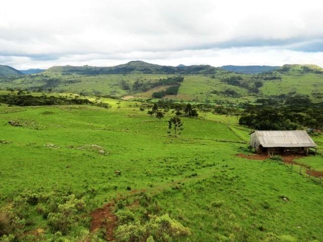 Sitio em Urubici/ área rural /chácara fazenda em Urubici 223.460 m² - Foto 4
