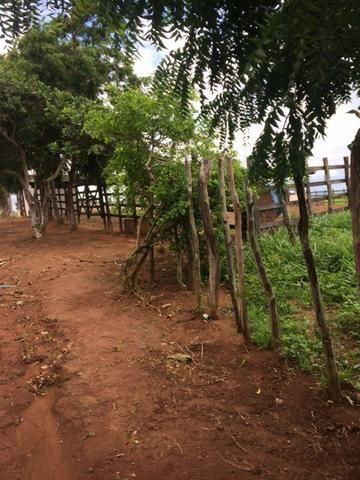 Fazenda-Granja-Sítio com 21 Hectares em Aliança - Foto 15