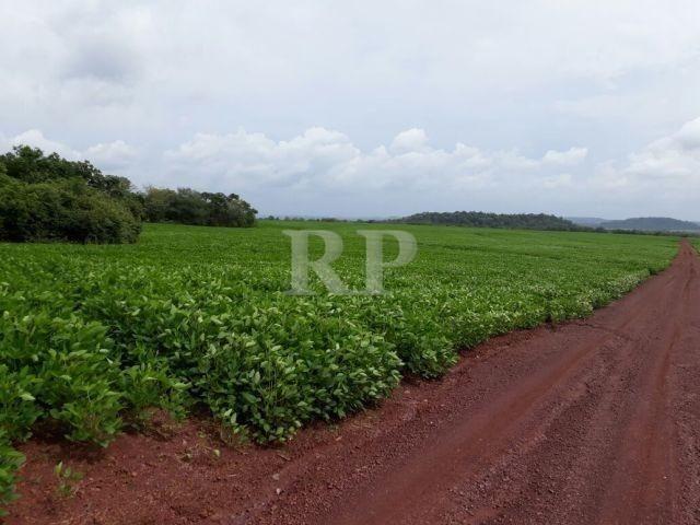 Fazenda 2006 Hectares em Tocantis - Foto 7