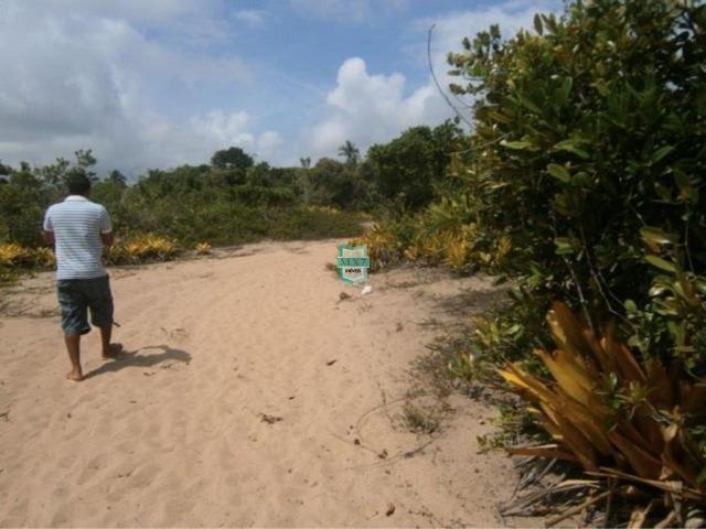 Itacaré. Fazenda de frente para o mar com 100 Hectares - Foto 3