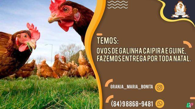 Ovos caipira; Granja Caipira Maria Bonita