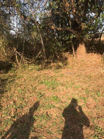 Chácara a 5 Km de Avelinópolis,10 km de Araçu - Foto 6
