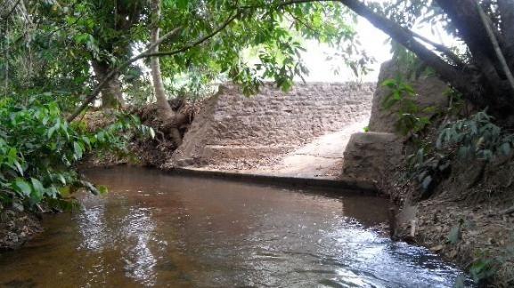 Fazenda-57km de Palmas(120 alqueires)