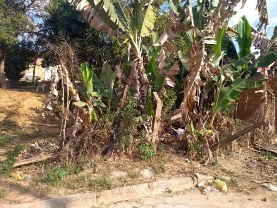 Terreno à venda em Vila maria regina, Juatuba cod:TE00013 - Foto 2