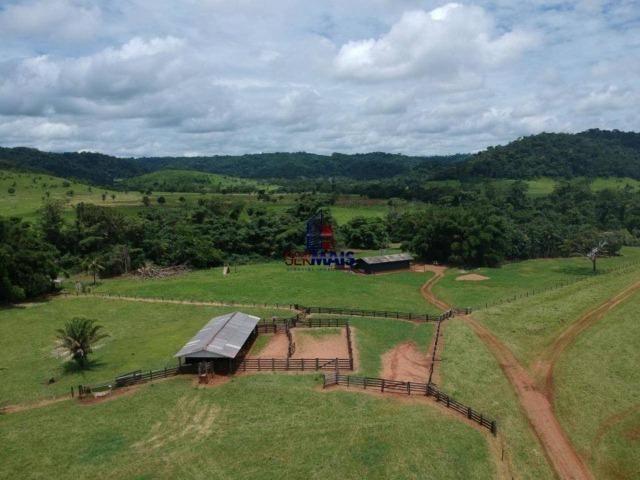 Fazenda à venda, por R$ 11.594.000 - Alta Floresta D'Oeste/RO - Foto 2