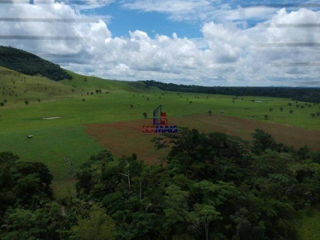 Fazenda à venda, por R$ 11.594.000 - Alta Floresta D'Oeste/RO - Foto 11