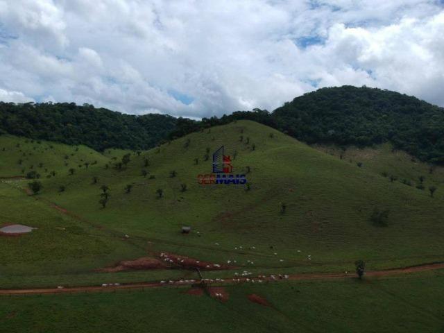 Fazenda à venda, por R$ 11.594.000 - Alta Floresta D'Oeste/RO - Foto 4