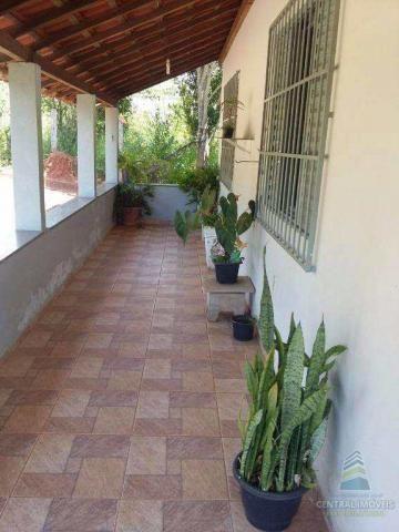 Chácara à venda com 2 dormitórios em Centro, Alfenas cod:4034 - Foto 3