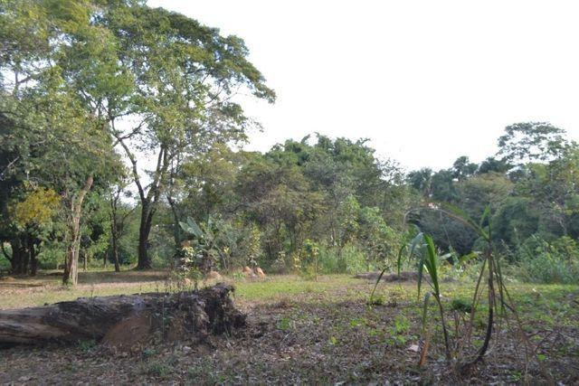 Chácara á venda (4 lotes): 9.729,72 m². Cidade Vera Cruz, Aparecida de Goiânia-GO - Foto 17
